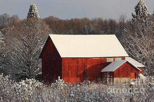 Winter Barn by Teresa McGill