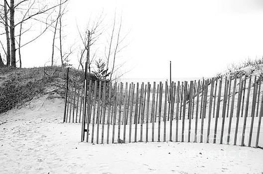 Elaine Mikkelstrup - Winter Beach