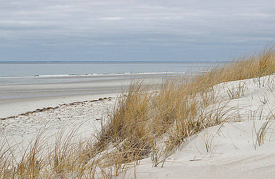Winter Beach Scene by Linda Crockett