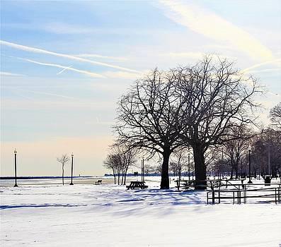 Winter Beach by Stacie Fernandes