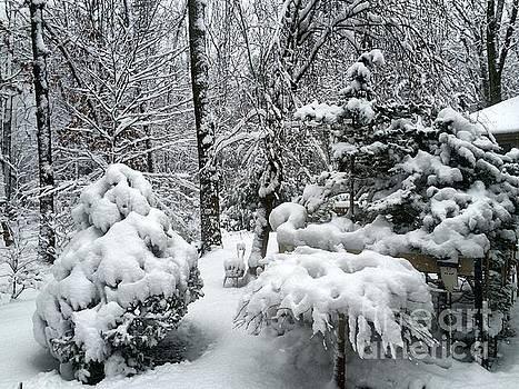 Edward Sobuta - Winter Beauty