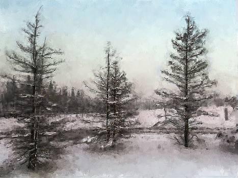 Winter Begins by Eduardo Tavares