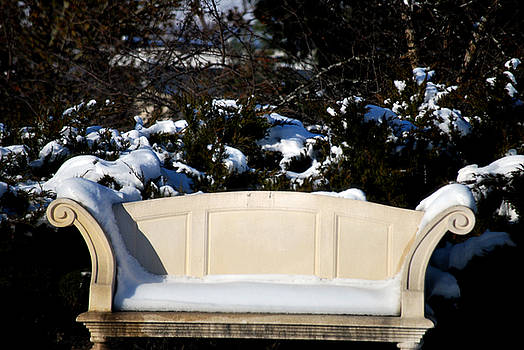 Michelle  BarlondSmith - Winter Bench