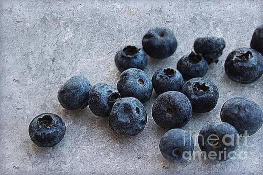 Winter Berries by Clare Bevan