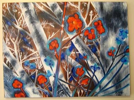 Winter berries. by Elizabeth H Tudor