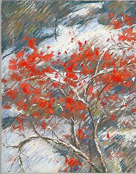 Winter Berries by Grace Goodson