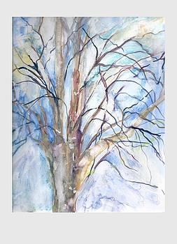 Winter Birch by Claudia Smaletz