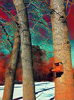 Brenda Plyer -  Winter Birdhouse with Colorful Sky