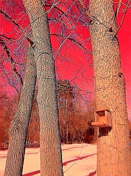 Brenda Plyer - Winter Birdhouse with Red Sky