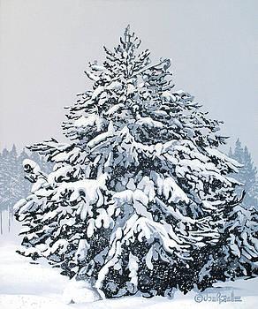 Winter Blanket by Joe Roselle