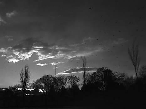 Winter Bleakness by Mahshid Nahavandi
