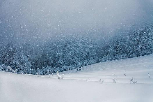 Winter Blizzard by Evgeni Dinev
