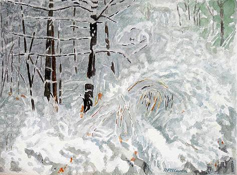 Winter Bramble by Robert P Hedden
