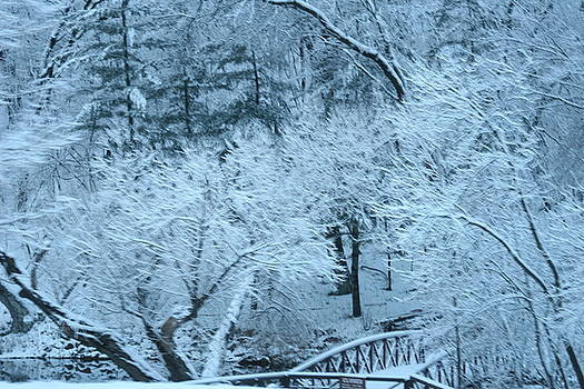 Winter Bridge by Laurie Prentice