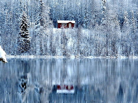 Winter Cabin Reflection by Sherry McKellar