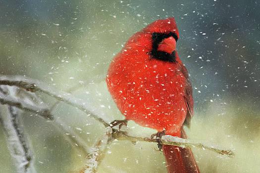 Lana Trussell - Winter Card