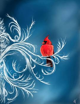 Winter Cardinal by Norman Klein
