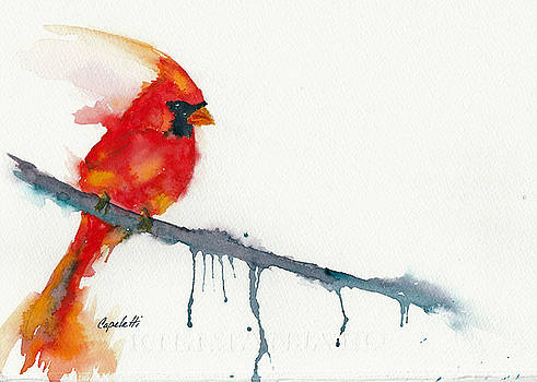 Winter Cardinal Red Bird by Barb Capeletti