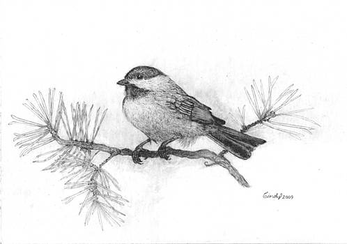 Winter Chickadee by Cynthia  Lanka