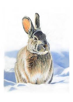 Winter Coat by Bob Nolin