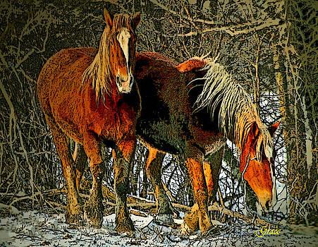 Winter Coats by Julie Grace