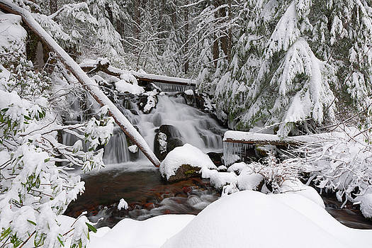 Winter Creek by Andrew Kumler