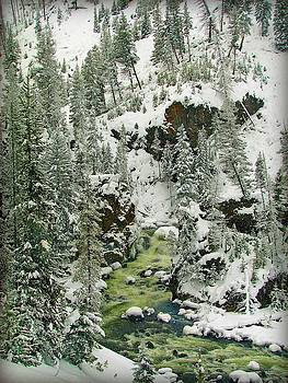 Winter Creek by Leah Grunzke