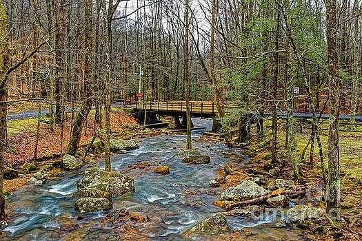 Winter Creek by Paul Mashburn