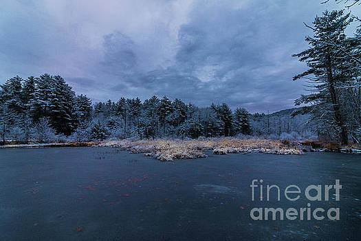 Winter Dawn by Mim White