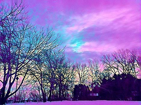 Brenda Plyer - Winter Day 6
