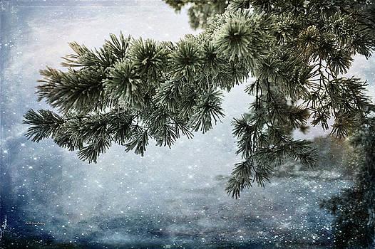 Winter Decor by Randi Grace Nilsberg