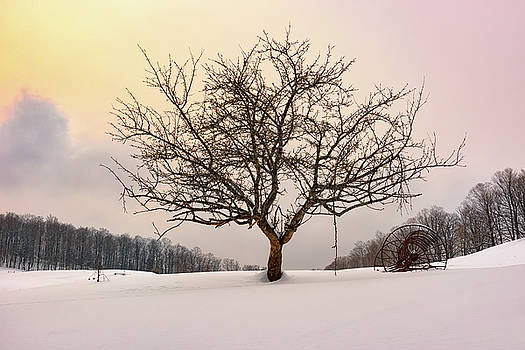 Winter Evening at Cloudland Farm by Rick Berk