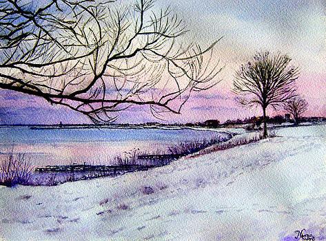 Winter Evening in Racine by Maria Varga-Hansen