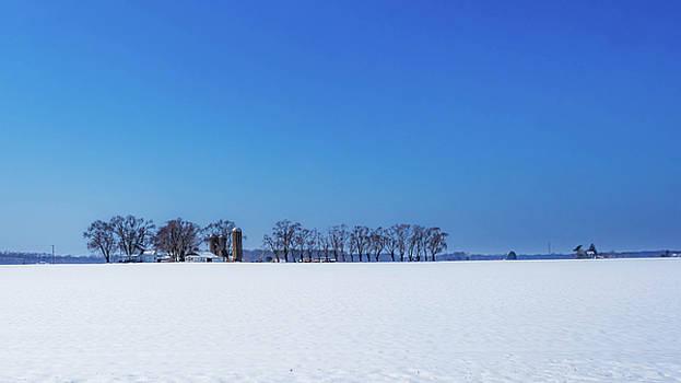 Louis Dallara - Winter Farm Blue Sky