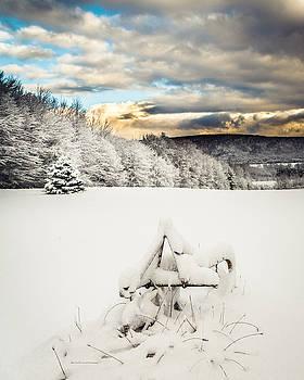 Chris Bordeleau - Winter Farm Field - vertical