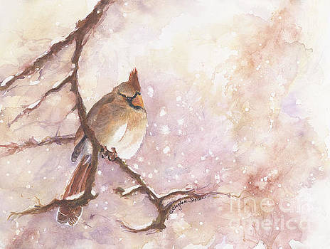 Winter Female Cardinal watercolor by CheyAnne Sexton