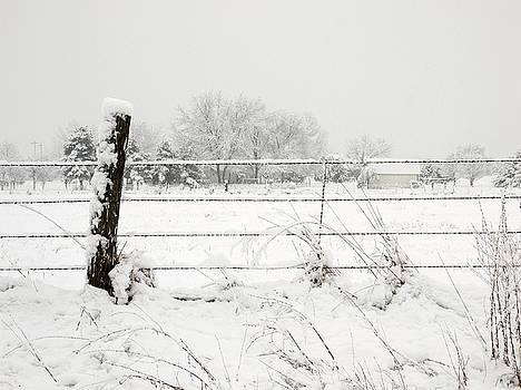 Winter Fence by Jim  Darnall
