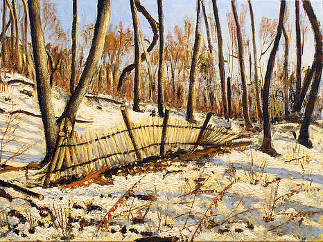 Winter fence by Vladimir Kezerashvili