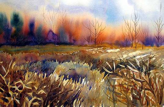 Winter Field by Chito Gonzaga