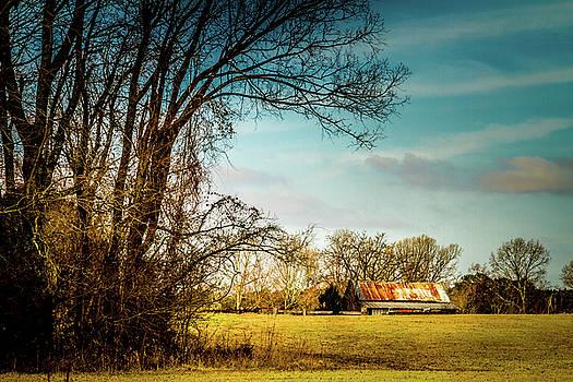 Winter Fields by Barry Jones