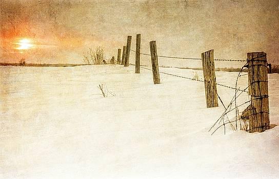 Garvin Hunter - Winter Fields
