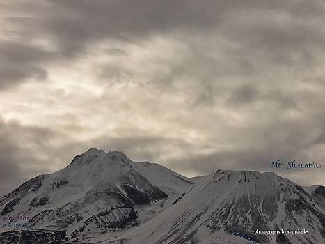 Winter Gray by Debi K Baughman