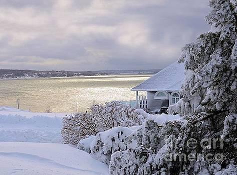 Atlantic Ocean Winter Harbour by Elaine Manley