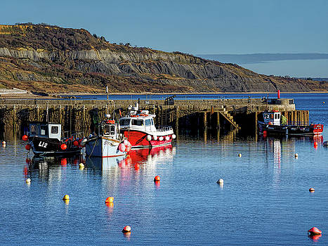 Winter Harbour - Lyme Regis by Susie Peek