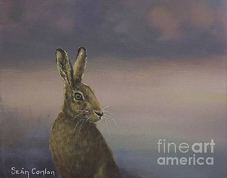 Winter Hare by Sean Conlon