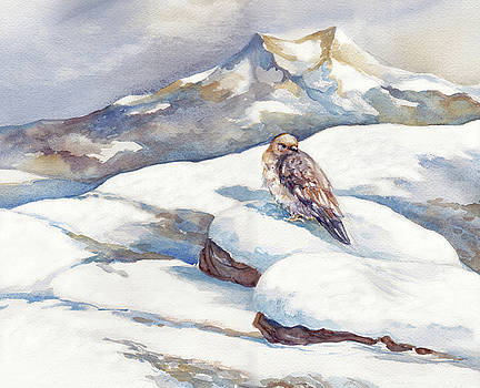 Peggy Wilson - Winter Hawk