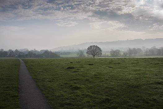 Stewart Scott - Winter haze
