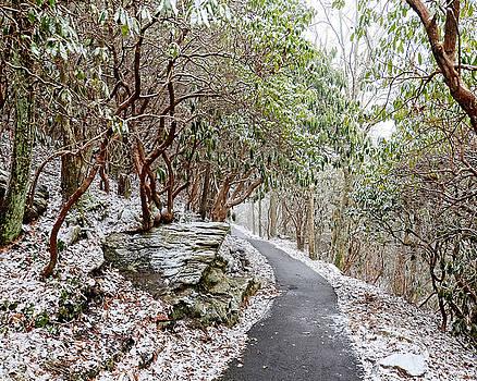 Winter Hiking Trail by Susan Leggett