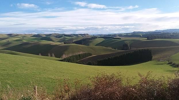 WInter Hills by Nareeta Martin