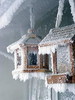 Leslie Rhoades - Winter Home